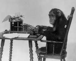 Googling monkey