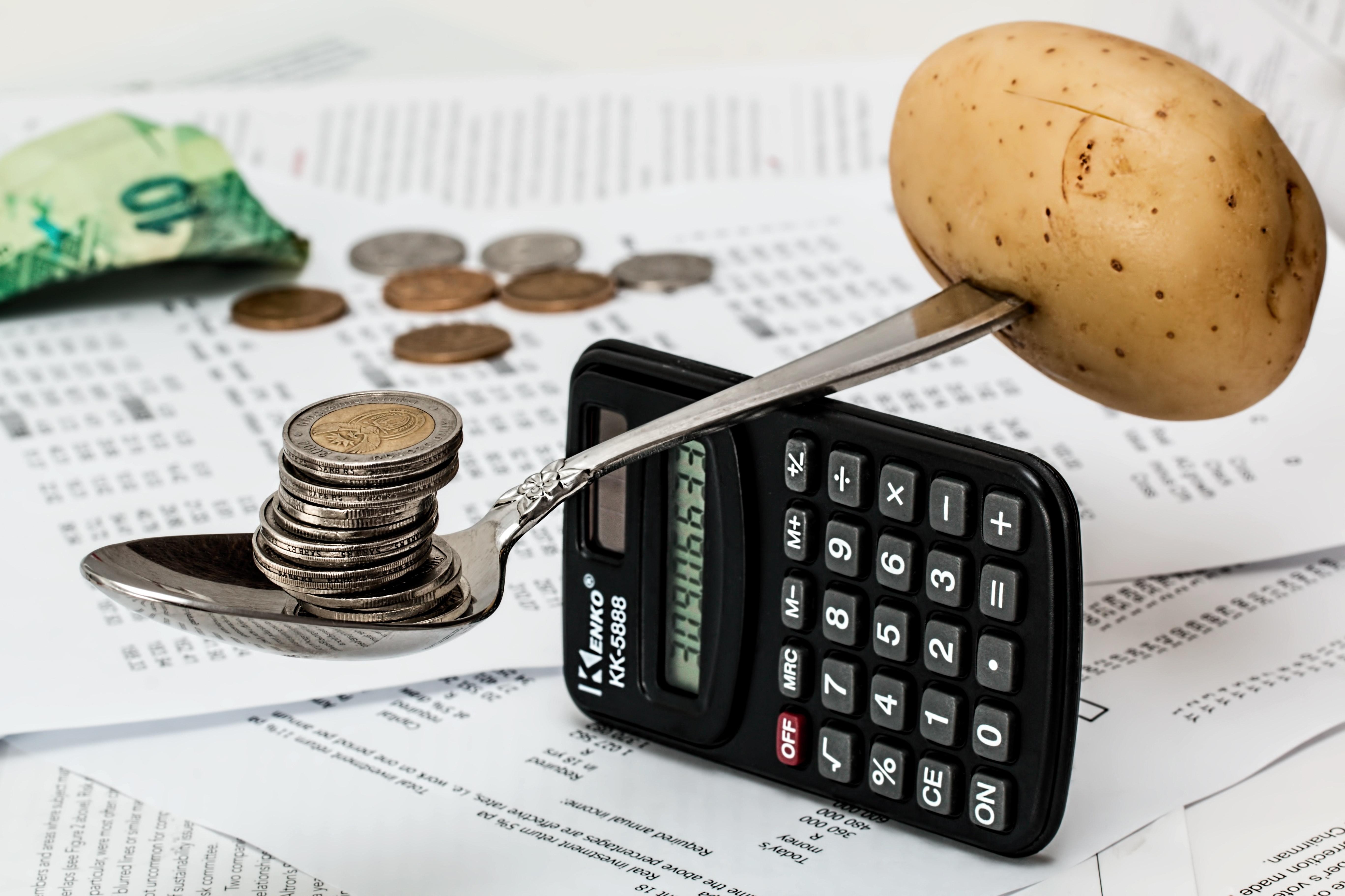 Back Of The Napkin Privately Held Company Value Calculator